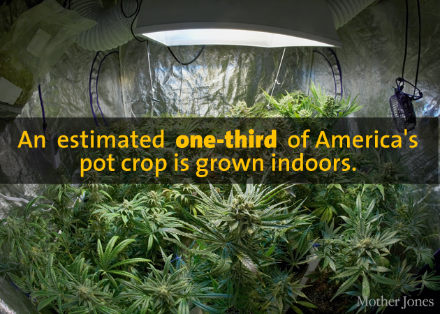 f7c9b8e9a Sources: Jon Gettman (2006), US Forest Service (California outdoor grow  stats include small portions of Oregon and Nevada), Office of National Drug  Control ...